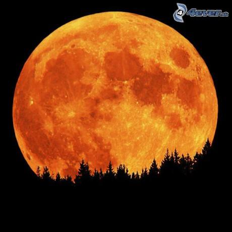 Obrazky 4ever sk mesiac 8041547